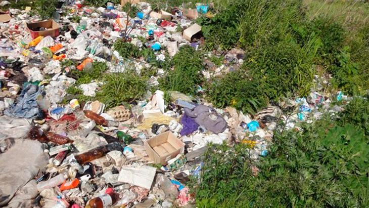 Цель мусорной реформы