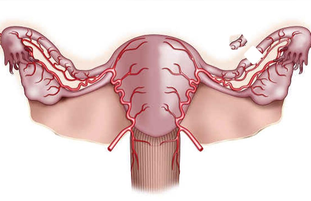Матка в тонусе при беременности симптомы